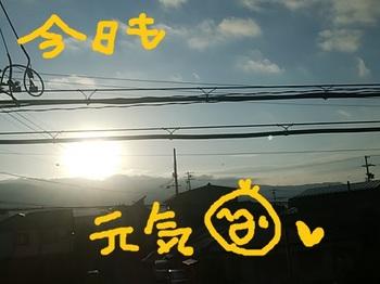 IMG_20180414_060959.jpg